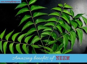 Benefits of Neem for your Skin and Hair (with DIY Face and Hair Masks)